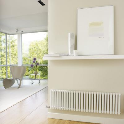 Horizontal Double Radiator